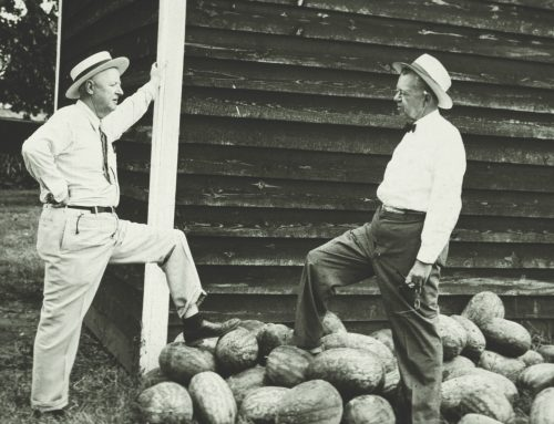 Hugh Hammond Bennet: Pioneer of Soil and Water Conservation Districts