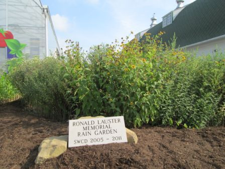 Ronald Lauster Memorial garden - raingarden installation