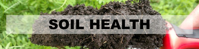 Soil Health Header with image of trowel and soil